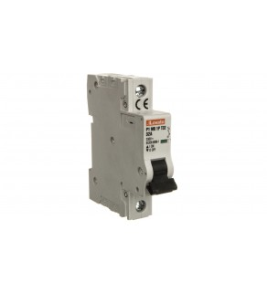 Ogranicznik mocy 1P 32A 10kA P1MB1PT32