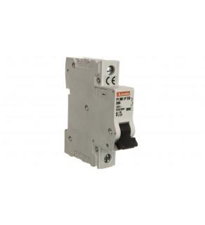 Ogranicznik mocy 1P 20A 10kA P1MB1PT20