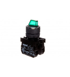 Przycisk pokrętny podświetlany, 2NO, II-0-I stabilny, zielony T0-B101SL30Y