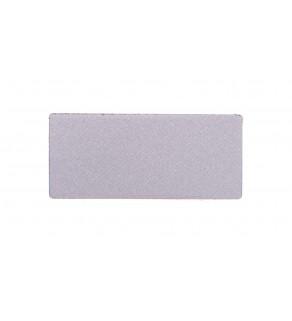 Tabliczka opisowa srebrna do oprawy LPX AU100 LPXAU109