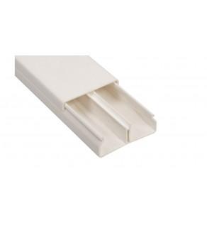Kanał instalacyjny z przegrodą 50x20 WDK-N20050RW biały 6168744 /2m